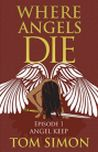 Angels Die cover