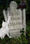 7 from haven cover